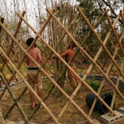 Installation du toit